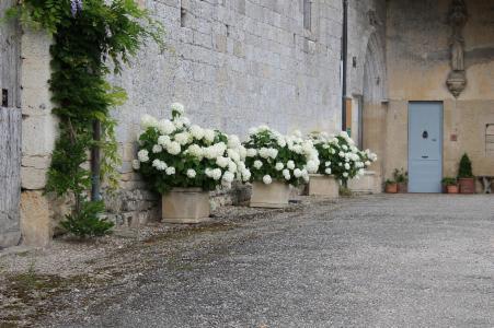 Porte Gothique Église Lachapelle
